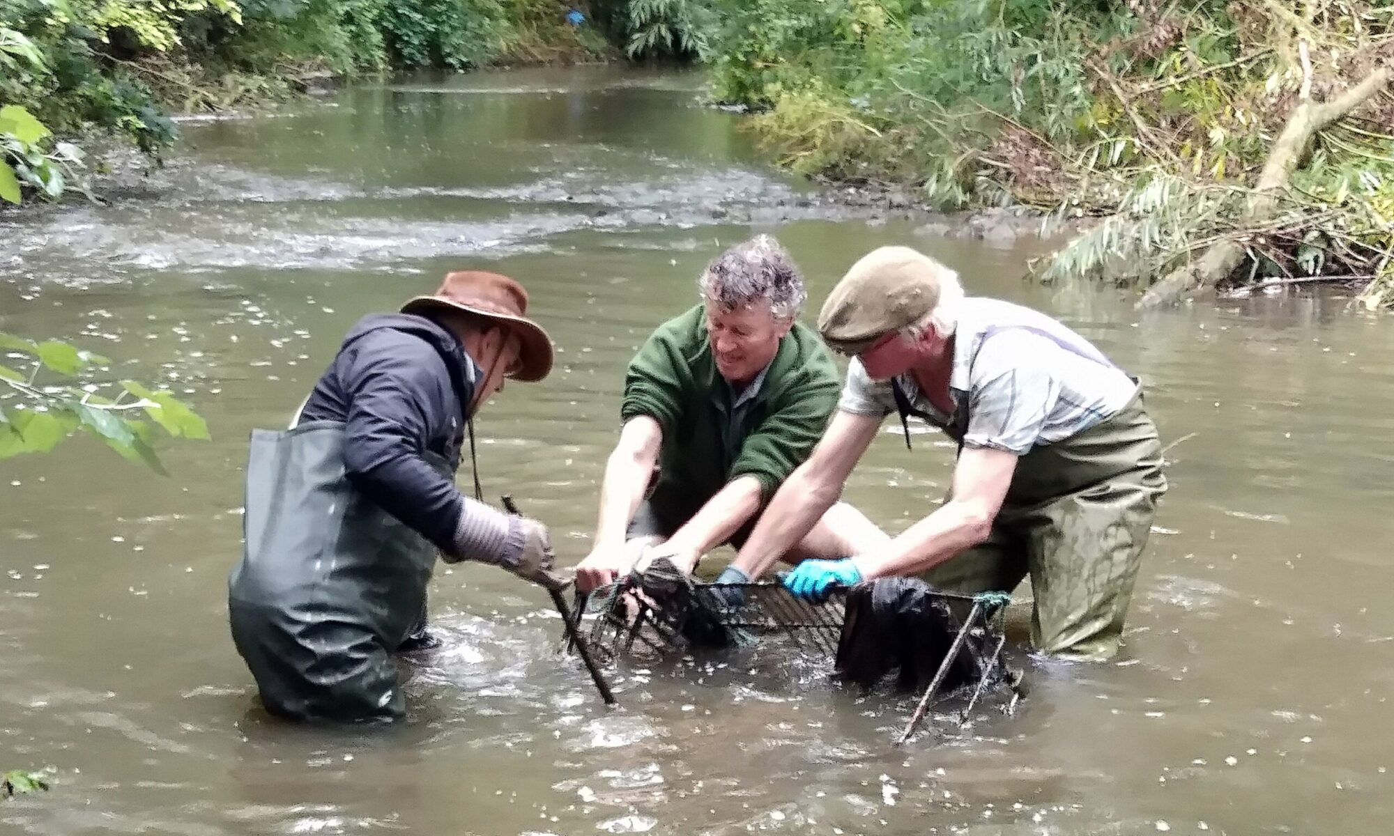 Friends of the River Frome